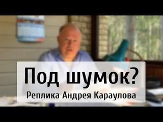 Под шумок?  Реплика Андрея Караулова