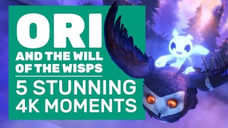 Ori And The Will Of The Wisps Gameplay | 5 Unmissable 4K Moments