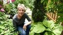 Design Ideas for Narrow Garden Spaces Take a Tour of Rosanne's seven foot wide side garden