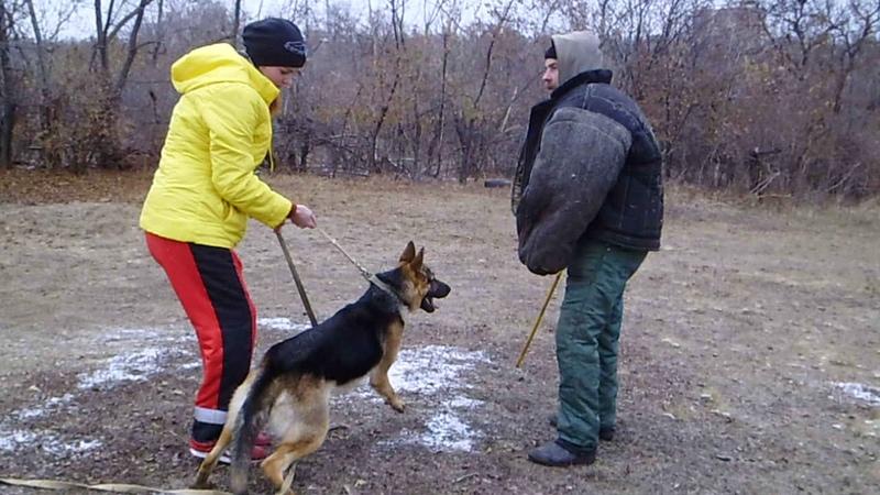 Джесси и Элла тренинг по защите короткие атаки 18 11 20