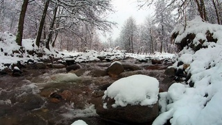 Blizzard Snowstorm Sounds for Relaxing & Sleeping | river sounds & Falling Snow Sounds