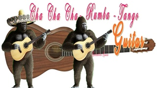 CHA CHA CHA -  RUMBA - MAMBO - TANGO Monkeys Animals | Beautiful Spanish Guitar  - Relaxing Music