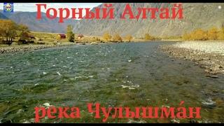 Горный Алтай река Чулышма́н золотая осень