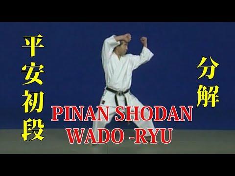 WADO - RYU kata Pinan Shodan Bunkai 和道流 形 分解 (平安初段)