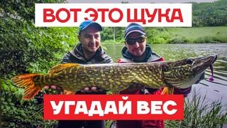 🎣 Ловля Щуки летом на ДИКАРЕ! + Конкурс! Щука на спиннинг