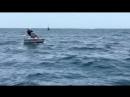 курьезы на рыбалке
