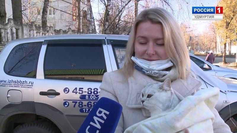 В Ижевске началась выездная вакцинация домашних животных от бешенства