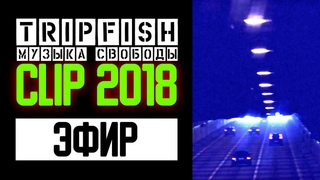 TripFish - CLIP - Эфир 2018