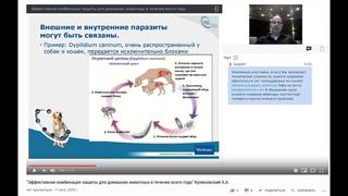 """""""Эффективная комбинация защиты для домашних животных в течение всего года"""" Куликовский А.A."""