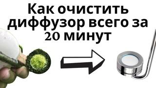Как очистить аквариумное оборудование от водорослей. Дропчекер, диффузор, Lily Pipe