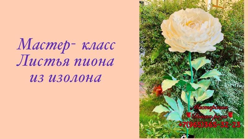 Листья пиона из изолона Мастер класс Дикая роза 2020