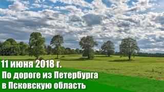 11 июня 2018 г. По дороге из Санкт-Петербурга в Псковскую область