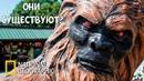 Последний неандерталец Реальность или фантастика Документальный фильм про Снежного Человека