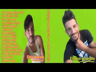 Elionor Andrade (Otimismo)(360P).mp4