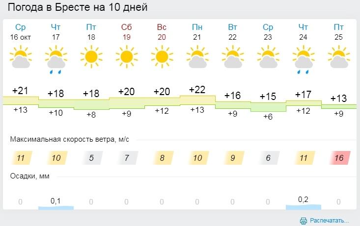 Температурные рекорды побиты 15 октября в Бресте и Гомеле