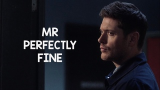 mr. perfectly fine   dean & castiel