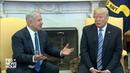 WATCH: President Trump meets Israeli Prime Minister Netanyahu at White House