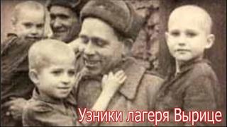 Детский концлагерь в Вырице . Рассказы очевидцев .