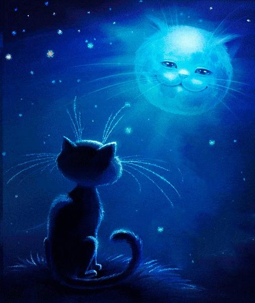 доброй ночи картинки с прикольными животными на телефон