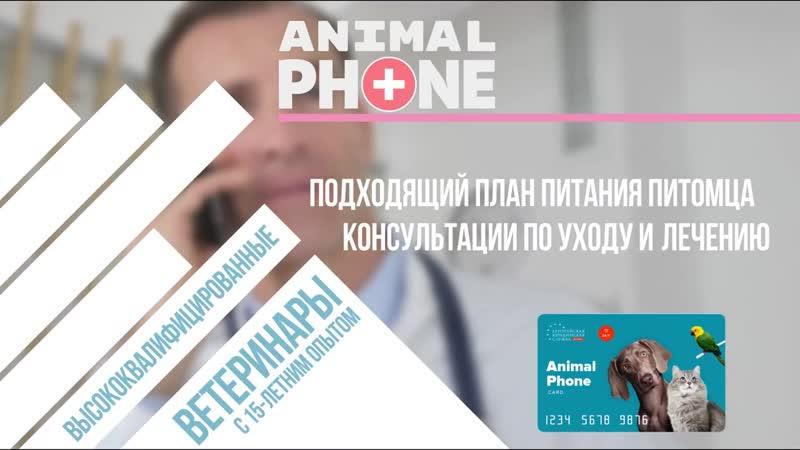 Animal Phone от ЕЮС Брокер Круглосуточный сервис для владельцев домашних животных