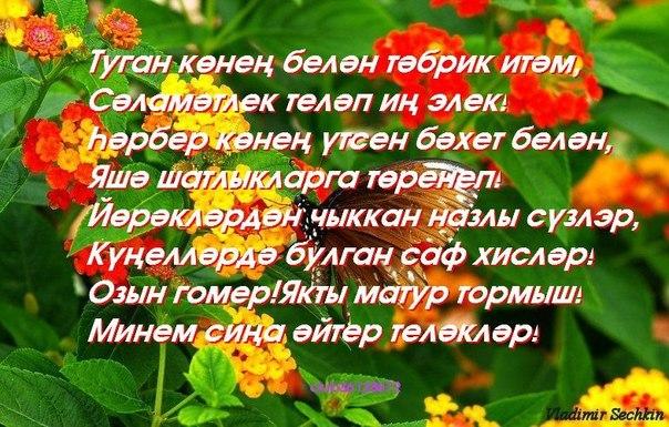 Стихи на татарском туган конен белэн