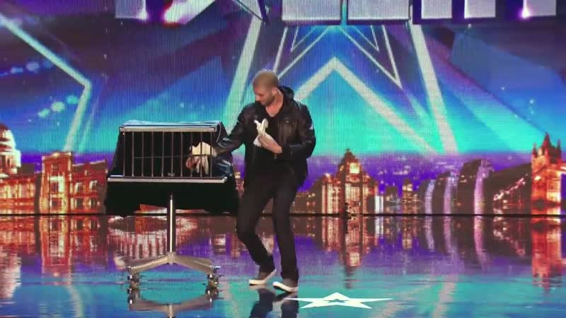 Darcy Oakes jaw dropping dove illusions Britains Got Talent 2014
