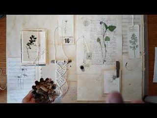 Набор бумажно ботанических реквизитов для декора №1