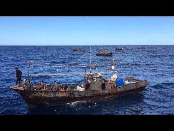 Corée du Nord enquête exclusive sur ces pêcheurs qui pillent les eaux voisines