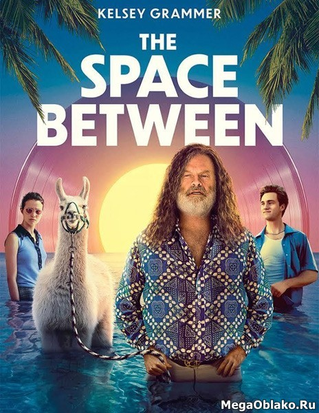 Пространство между / The Space Between (2021/WEB-DL/WEB-DLRp)