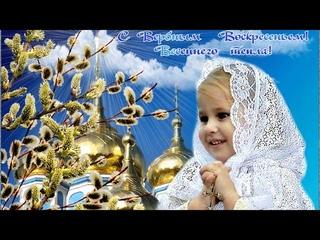 Поздравления с Вербным Воскресеньем Музыкальная видео открытка