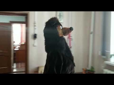 Сказ о том как медведь библиотеку к Новому году украшал