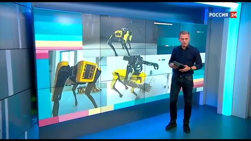 Россия 24 Будущее уже наступило робот пёс Spot от Boston Dynamics доступен для заказа Вести net