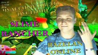 ВОЗРОЖДАЕМ ПУСТЫНЮ! Slime Rancher: Razelan Online