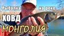 Монголия. Рыбалка на реке ХОВД/Монгольский хариус на спининг/Автотуризм - путешествие на vw Touareg.