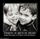Фото Алексея Шальнева №3