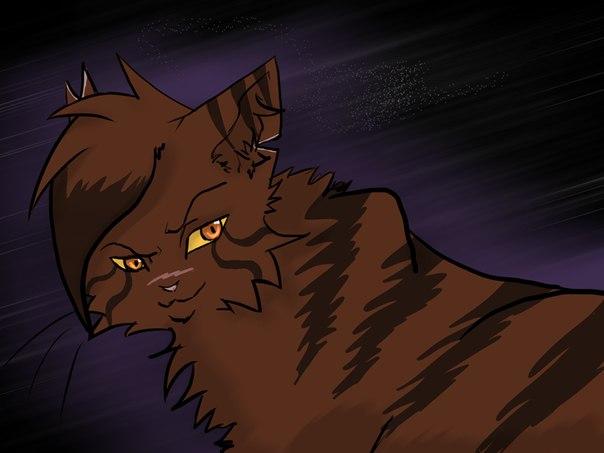 картинки коты воители бич и звездоцап и саша вот
