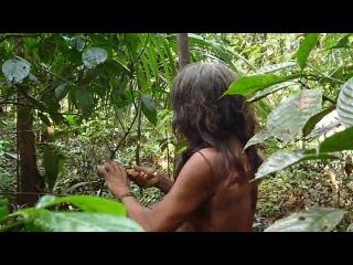 A Huaorani- Using Real Blowgun