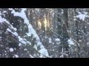 Белым снегом Ночь метельная ту стежку замела По которой по которой Я с тобой любимый рядышком прошла