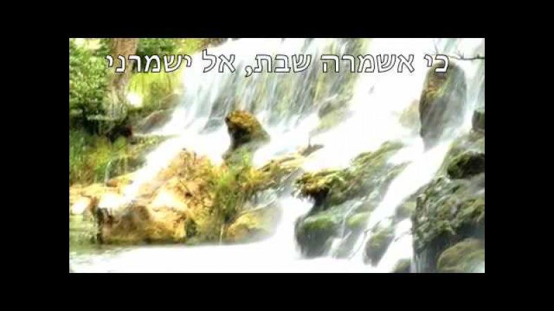 כי אשמרה שבת, הרב בצרי חגי Ki Eshmera Shabbat, Rabbi Batzri.m4v