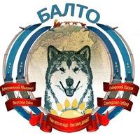 """Логотип ЦЕС """"Балто"""" Ездовые собаки: хаски, маламуты и др"""