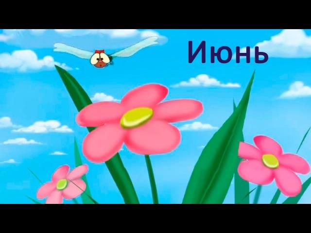 Развивающие мультфильмы Совы Времена года Июнь