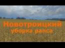 LS13 Новотроицкий-оборка рапса