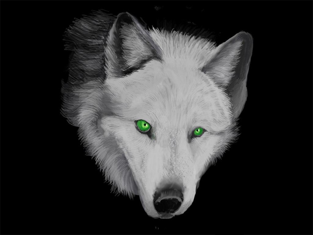 компаний черно белые картинки с волком с голубыми глазами фото отряда тот