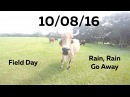 Field Day, Rain Rain Go Away - 10/08/16 - Huntley Brothers