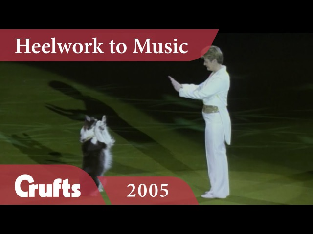 Heelwork To Music Mary Ray's 2005 Performance Crufts Dog Show