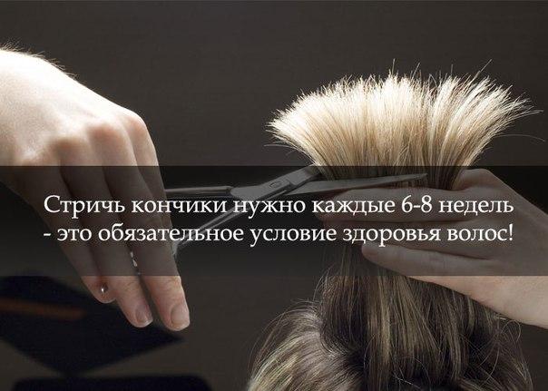 Картинка про волосы с надписями