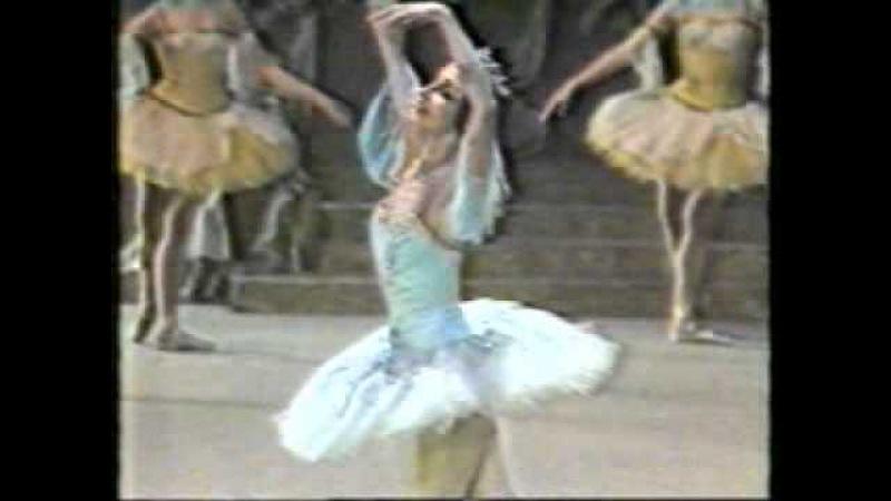 Raymonda Bolshoi Tour in Argentina T Colon N Bessmertnova A Bogatiriov 1act 1986