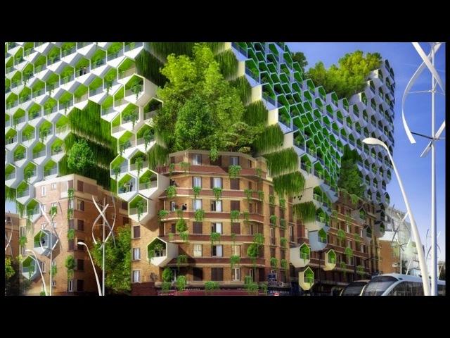 Эффективное строительство Природные технологии в архитектуре Подражание природе 05 04 2017