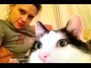 Kate McKinnon Talking About Her Cat Nino