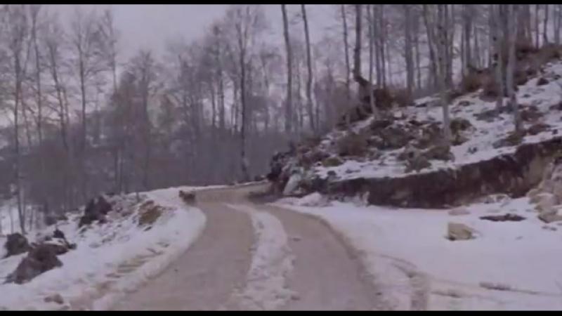 ◄Uomini e Lupi(1957)Люди и волки*реж.Джузеппе Де Сантис, Леопольдо Савона